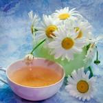 Чай из ромашки: здоровье, доступное всем