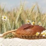 Цельнозерновые продукты: почувствуйте разницу