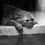Послеоперационная депрессия: серьезная опасность или капризы взрослой девочки?