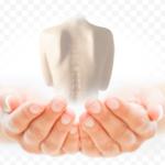 (Не)прикасаемые: как остеопатия помогает женщинам после рака груди